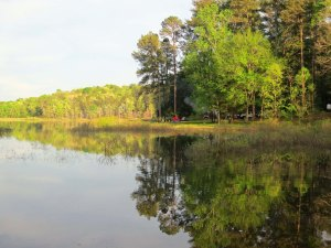 A reflection shot at Tishomingo State Park along the Natchez Trace in northern Mississippi.