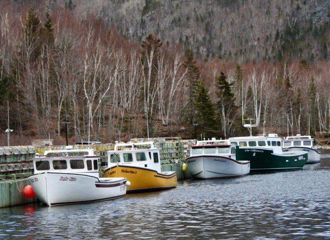 We found these boats near the small town of Ingonish.