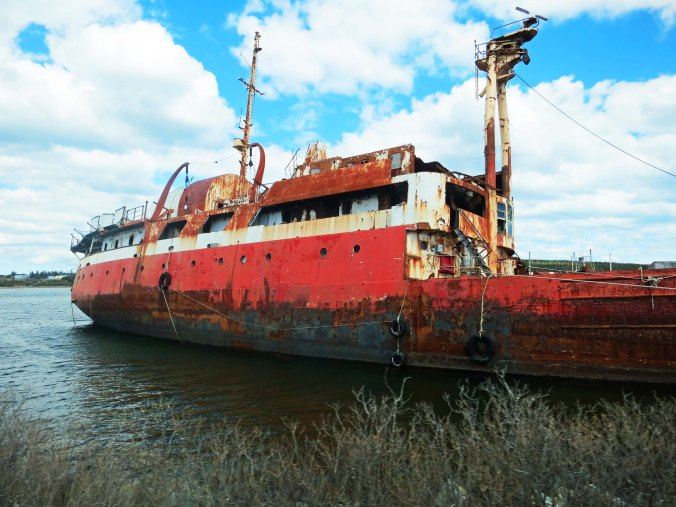We found what appeared to be a large derelict along the coast.