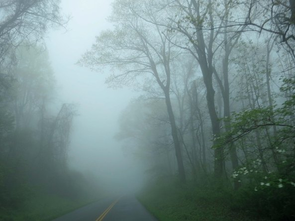 Peggy and I woke up to a foggy morning on our last day of retracing my bike route along the Blue Ridge Parkway. I was glad I wasn't riding my bike.