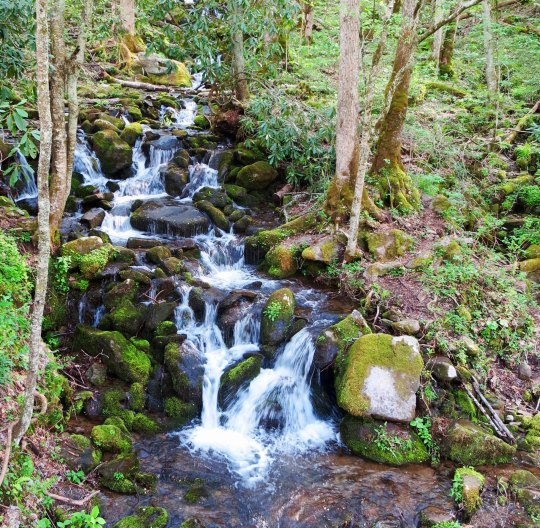 Great Smoky Mountains National Park waterfall in North Carolina.