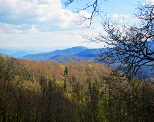 View of Great Smokey Mountains National Park in Tennessee.
