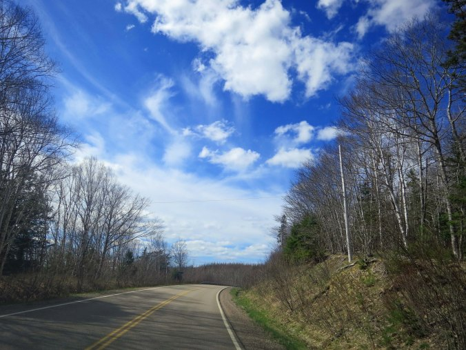 A road shot of Highway 7