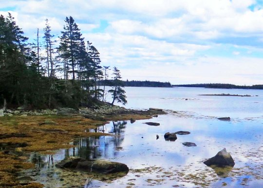 Cove on East Coast of Nova Scotia