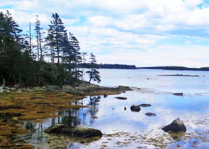 Cove on East Coast of Nova Scotia