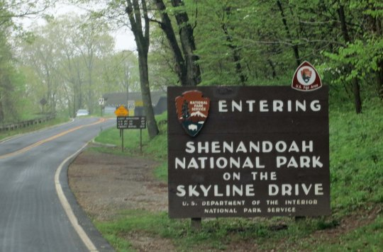 Skyline Drive provides the same beauty, lack of commercial traffic and slow speed limit as found on the Blue Ridge Parkway, without the severe ups and downs.