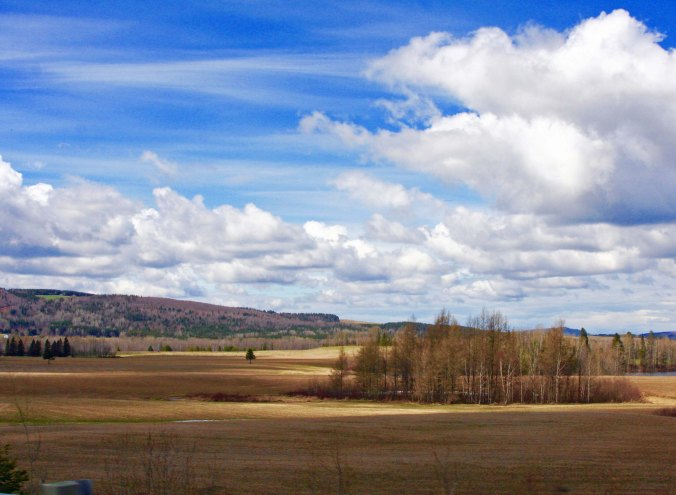 Scenic views along the way included open fields...