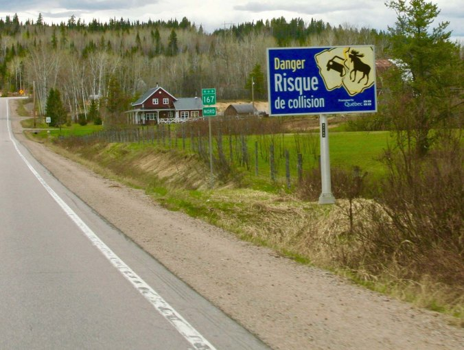 A sign not usually seen by your everyday city dweller in the US. It is the third watch out for moose sign I've shown. The first featured a moose, the second a moose and a car. This one in northern Quebec was a bit more graphic.