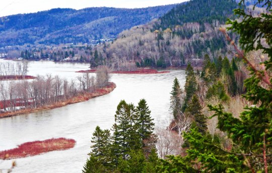 The Restigouche River widening out before it flows into Chaleur Bay.