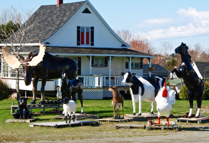 Peggy and I found this unique menagerie on our way to the ferry in