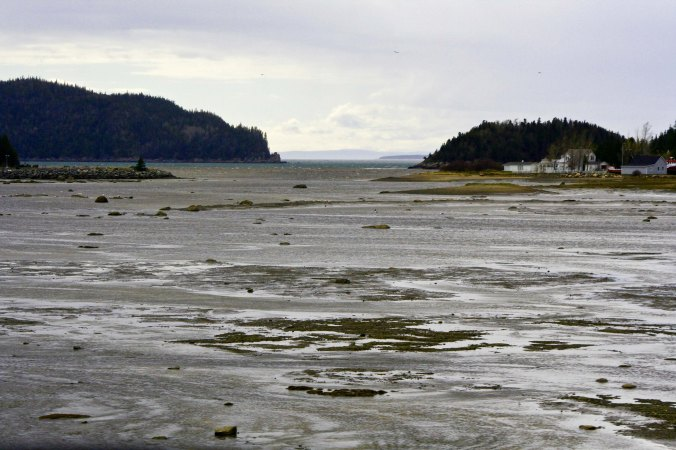 And views of the river as seen on the other side of this mud flat.