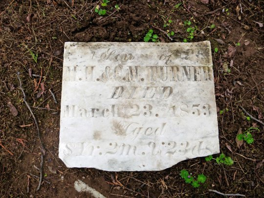 Once again found, a number of tombstones were on the ground, covered my the myrtle.