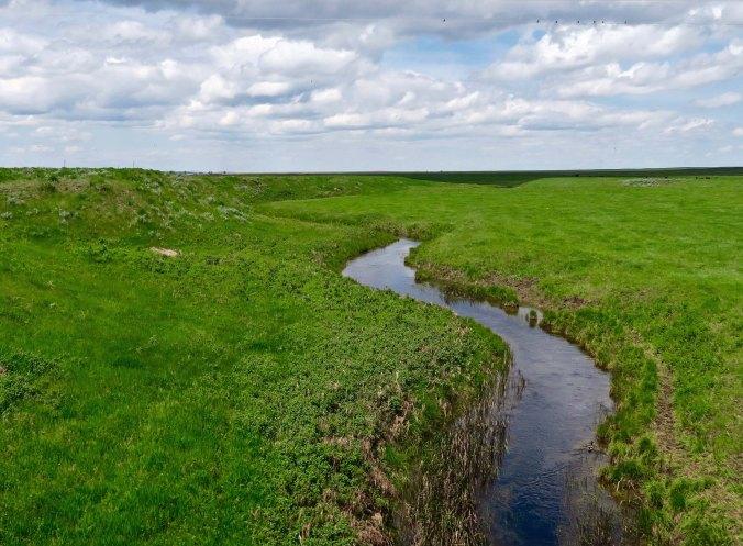A Montana stream found along US Highway 191.