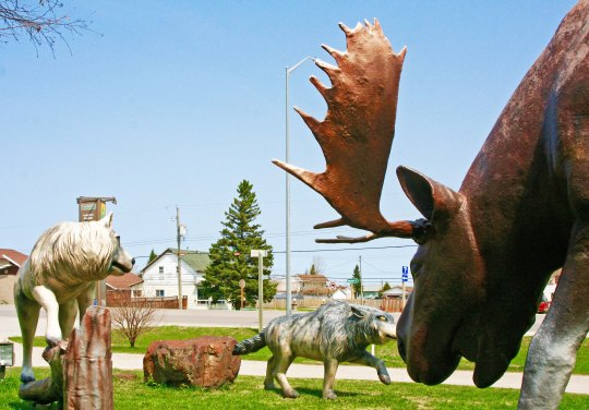 Giant moose and wolf sculptures in Hearst, Ontario Canada.