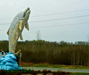 Lake Trout Sculpture in Larder Lake, Ontario Canada.