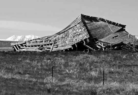 Here is my mandatory old barn photo for this blog with its dramatic backdrop of the Rocky Mountains. I didn't feel that this barn was simply falling down. It looked like it was melting!
