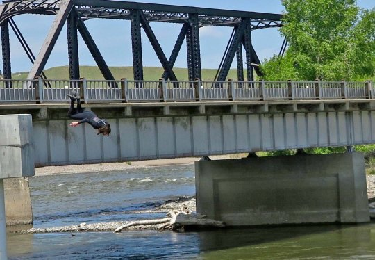 Did this guy just hear the election results? (Kidding) We watched this guy and another jump into the Yellowstone River— and come out alive. They had carefully waited for a policeman to pass.