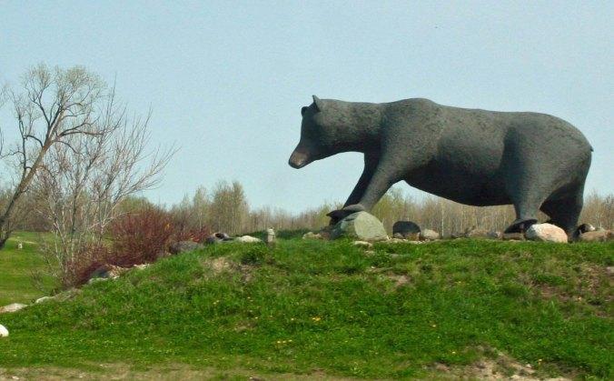 Large black bear sculpture found in Kapuskasing, Ontario Canada
