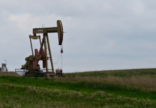 Cow now have strong competition from oil wells out in western North Dakota. Peggy and I saw oil operations everywhere. This wasn't the case when I biked through in 1989. Fracking seems to be the prime way for getting oil out of the ground. Can earthquakes be far behind?