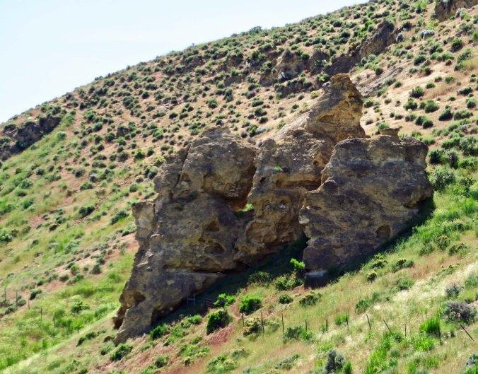 More Nevada rocks.