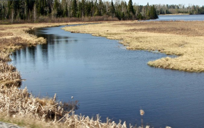 A stream along the Trans-Canada Highway in Ontario. My rivers ranged from the mighty Mississippi to mere trickles.