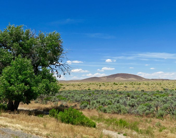 Highway 50 between Fallon and Carson provided a gentler view of the desert.