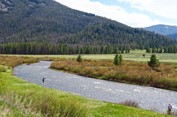 Fly fisherman try their luck in the upper waters of the Gallatin River in Wyoming's Yellowstone Park.