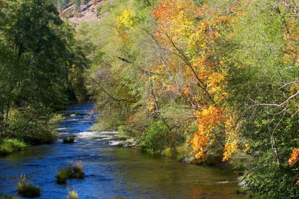 The Applegate River showing its fall colors.