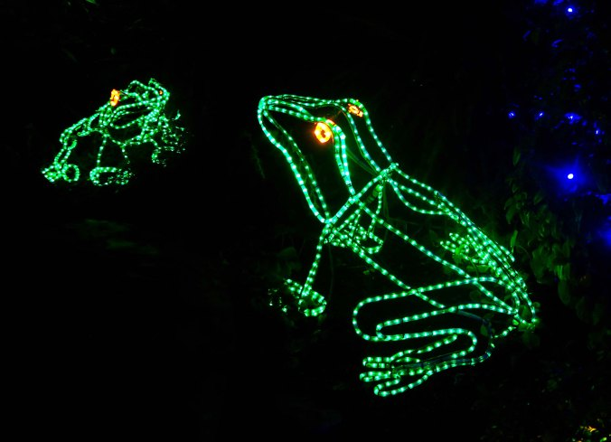 Holiday frogs at Oregon's Shore Acres State Park.