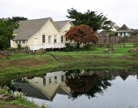 Pond reflection shot in the community of Mendocino on California's north coast.
