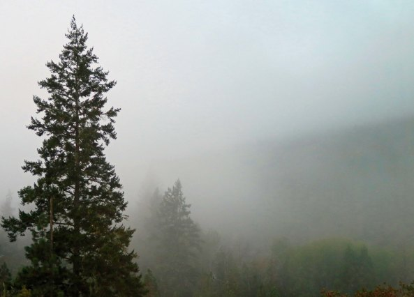 The mood changes dramatically when the mountain mists roll in.