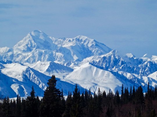 As was this view of Mt. Denali. We were ever so lucky. Having lived in Alaska for three years, I know how rare it is to capture the mountain on a clear day.