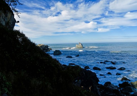 Patrick's Pt. State Park north of Eureka, California on Highway 101.
