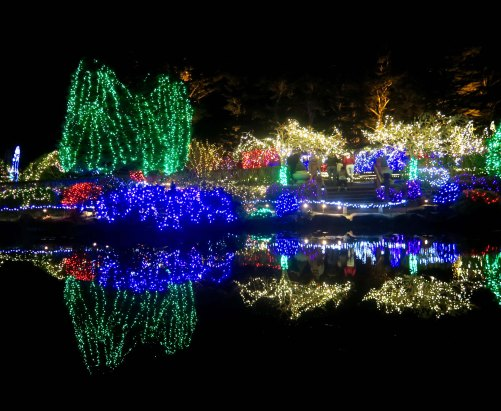 Holiday lights at Oregon's Shore Acres' State Park Holiday of Lights display.