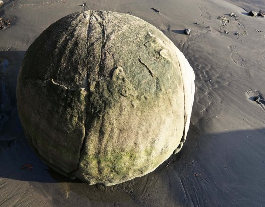 Concretion rock found in Sunset Bay on the Oregon Coast near Coos Bay.