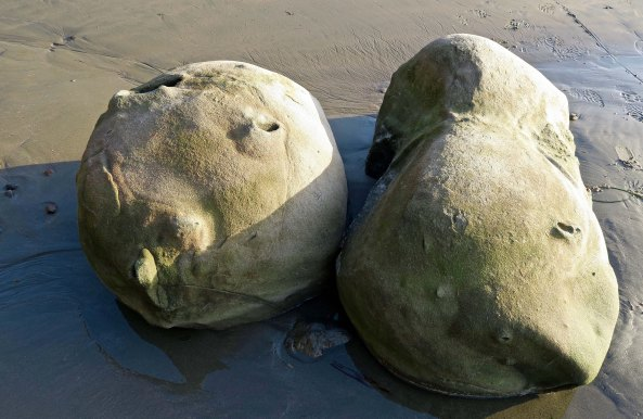 Concretions found on the beach of Sunset Bay on the Oregon Coast.