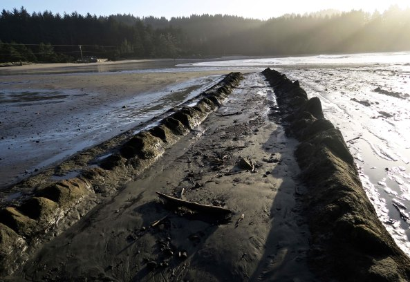 Sedimentary layers of rocks create tracks into Sunset Bay on the Oregon Coast.