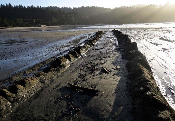 Sedimentary layers of rocks create tracks into Sunset Bay on the Oregon Coast.
