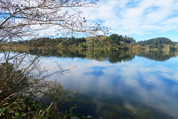Stone Lagoon State Park on Highway 101.