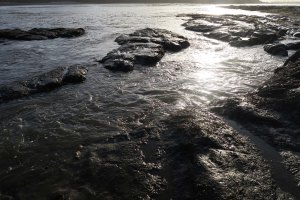 Tide pools at Sunset Bay in Oregon near Coos bay lit up by the sun at sunset.