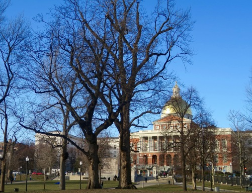 The Massachusetts' State House overalls the bucolic Boston Commons.