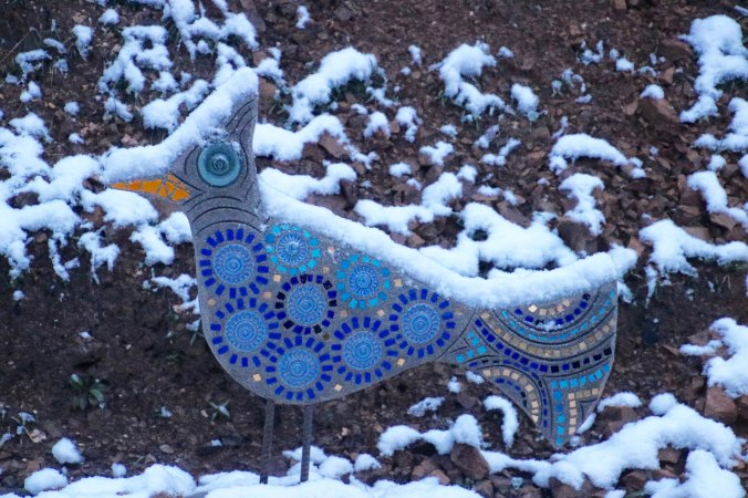 Our ceramic jay was looking cold.