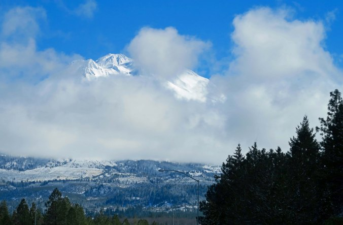 Peggy found Mt. Shasta peeking out from behind the clouds.