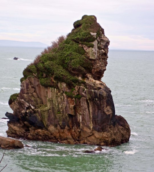 Photo of sea stack rock by Peggy Mekemson at Harris Beach State Park near Brookings, Oregon.