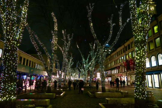 Quincy Market backs up to Faneuil Hall. The trees in its plaza were beautifully lit for the season.