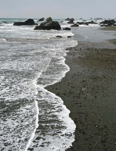 Sea stacks at Harris Beach State Park near Brookings, Oregon.