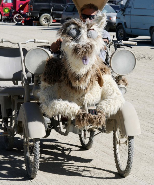 Dog mutant vehicle at Burning Man.