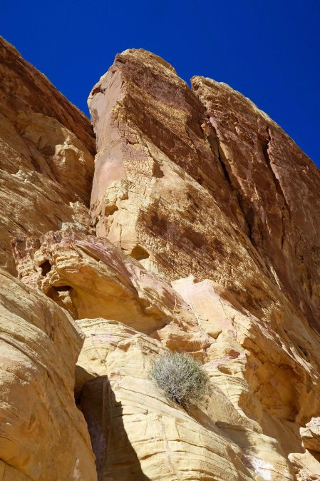 Photo of side of White Domes at Valley of Fire State Park.