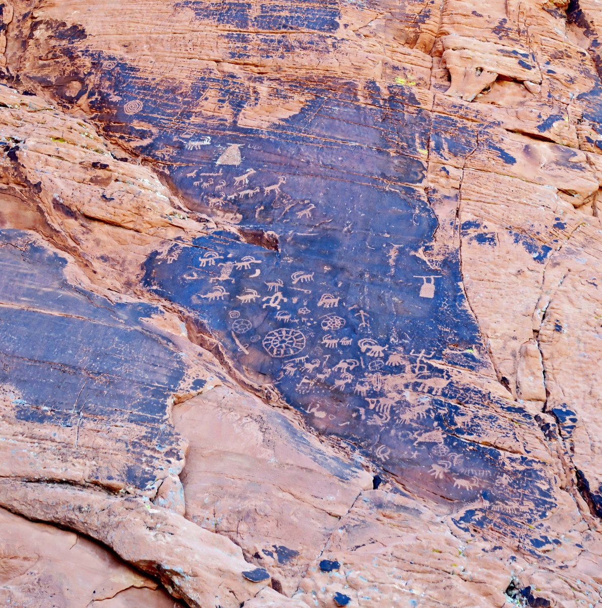 Petroglyphs carved into desert varnish on a cliff face near Atlatl Rock in Valley of Fire State Park near Las Vegas, Nevada.