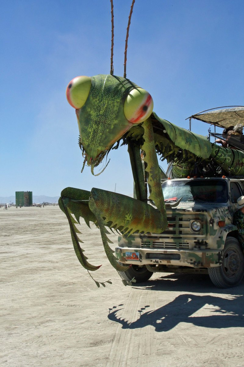 Praying Mantis mutant vehicle at Burning man.